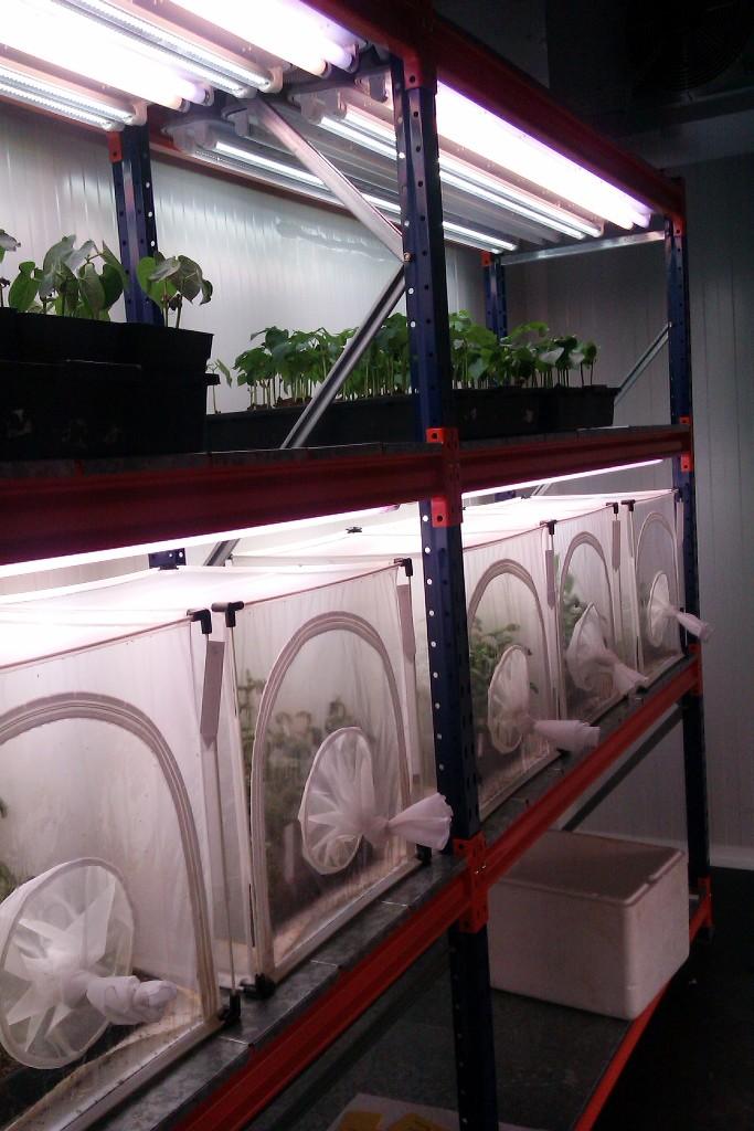 Estanterias metalicas de media carga para dentro de - Estanteria para plantas ...